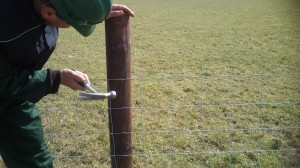 Repair and maintanence - FRS Fencing