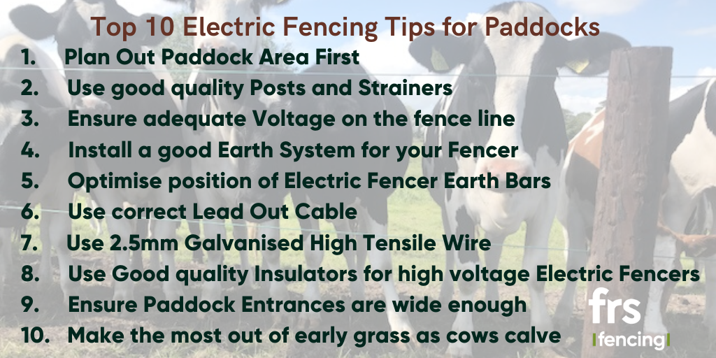 Top 10 Electric Fencing Tips for Paddock Fencing